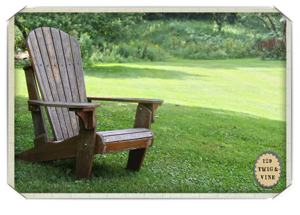 adirondack fish chair