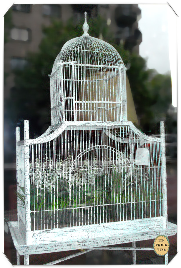 129twigandvine—montreal vintage birdcage