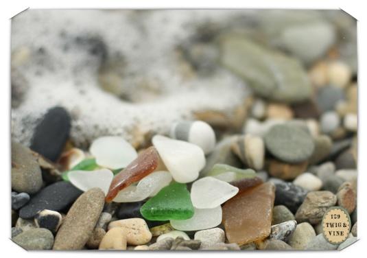 129twigandvine_garretstown_seaglass photograph by Sue Schlabach