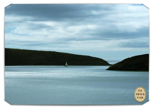 129twigandvine_kinsale_harbor photography by Sue Schlabach