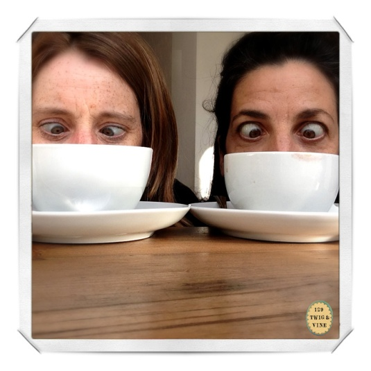 © sue schlabach, 129twigandvine, sue schlabach and sara pinto coffee selfie