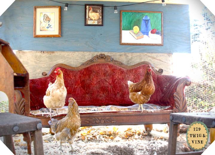 ©Sue Schlabach 129twigandvine Tori's hens, S. Strafford, VT