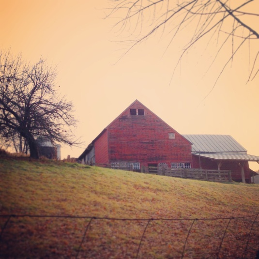 tuesday-barn